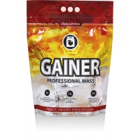 Gainer Professional Mass (5кг)