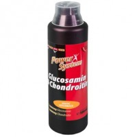 Glucosamine & Chondroitin (1000мл)
